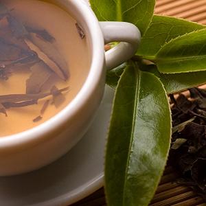 Tee richtig aufbrühen