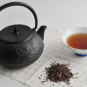 Hojicha Grüner Tee