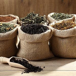 Tee-Säcke für Tee-Sommelier