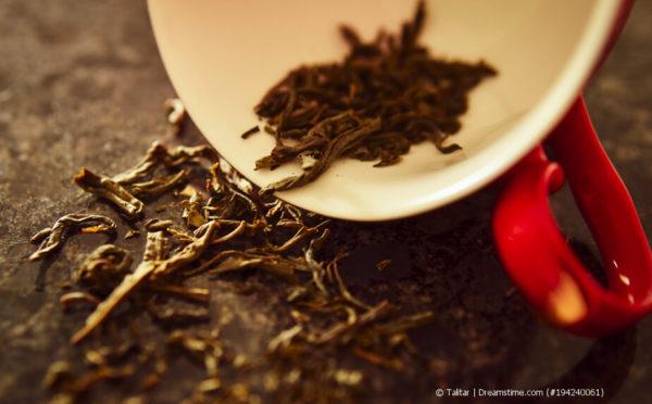 Warum lohnt sich der Kauf von Bio-Tee?