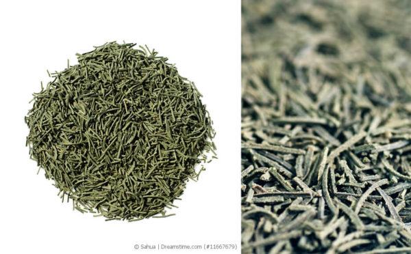 Kokeicha – der Tannennadel-Tee