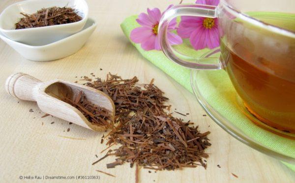 Lapacho-Tee – der Tee der Indianer