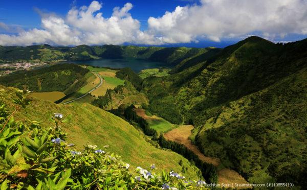 Wohlschmeckender Tee von den Azoren