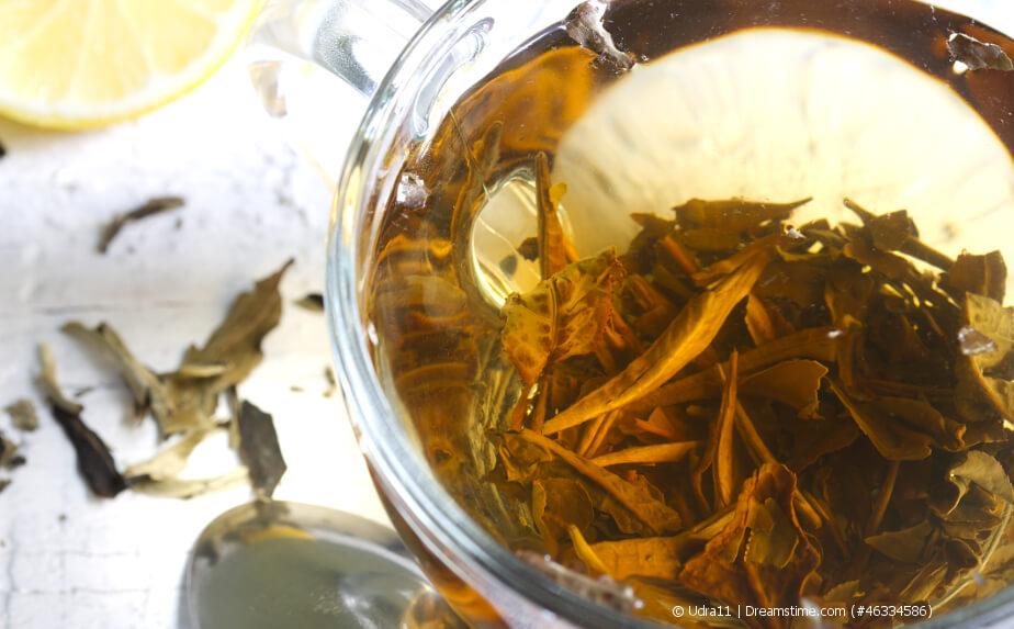Weißer Tee in einer Glastasse